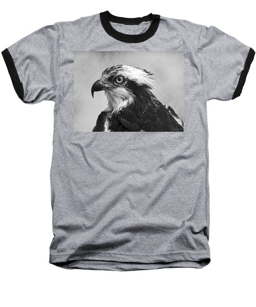 Osprey Monochrome Portrait Baseball T-Shirt