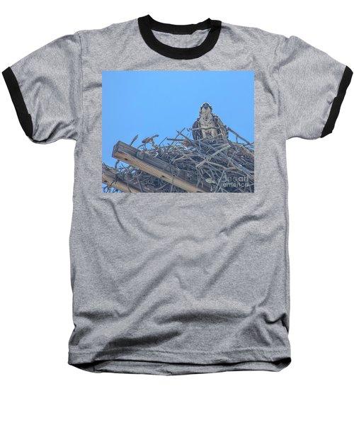 Osprey Nest Baseball T-Shirt