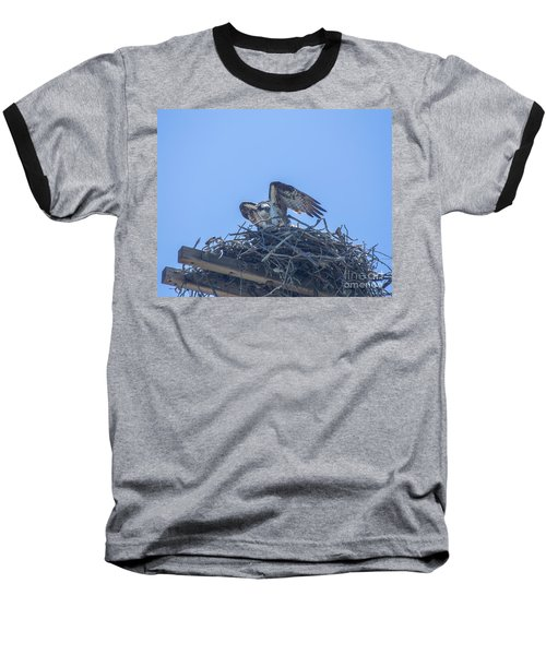 Osprey Nest II Baseball T-Shirt by Billie-Jo Miller