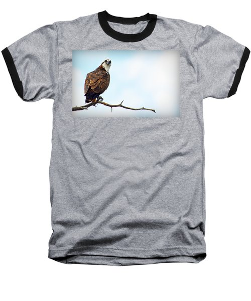Baseball T-Shirt featuring the photograph Osprey Out On A Limb by AJ Schibig