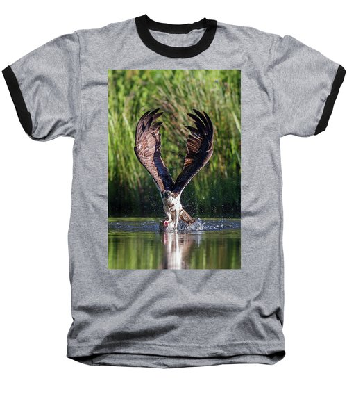 Osprey - Strike Baseball T-Shirt