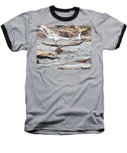 Baseball T-Shirt featuring the photograph Osprey Takes Fish From Gulls by Debbie Stahre