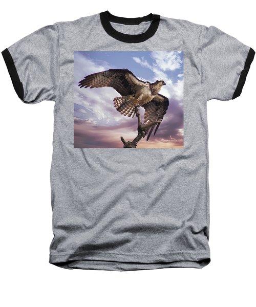 Osprey Wing Baseball T-Shirt