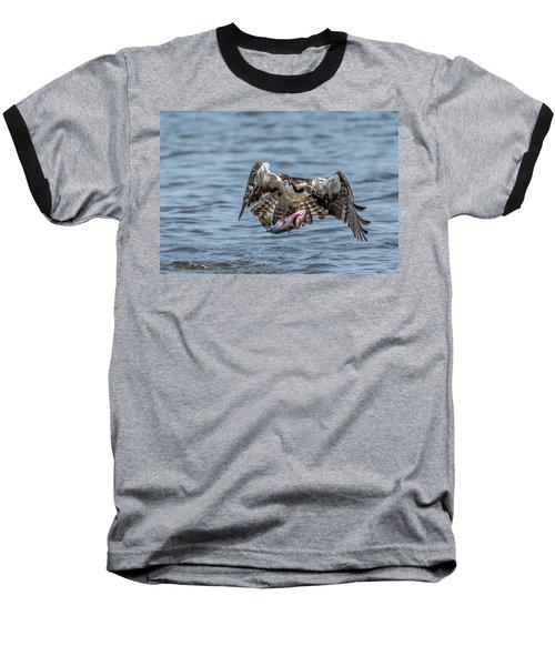 Osprey With Catch 9108 Baseball T-Shirt