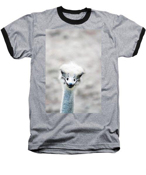 Ostrich Baseball T-Shirt by Lauren Mancke