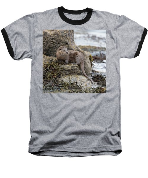 Otter Beside Loch Baseball T-Shirt