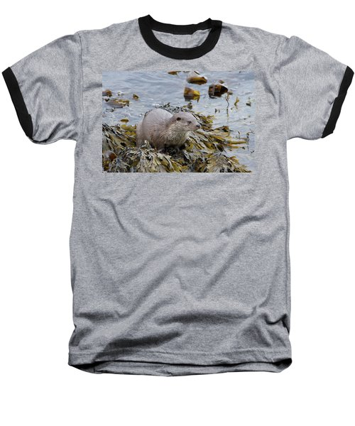 Otter On Seaweed Baseball T-Shirt