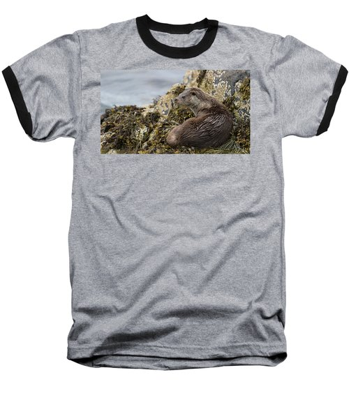 Otter Relaxing On Rocks Baseball T-Shirt