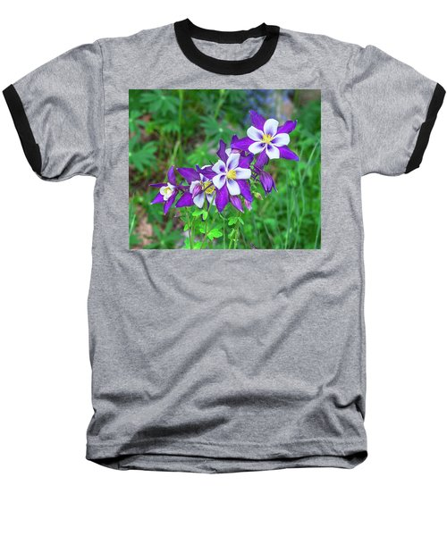 Our Gorgeous State Flower, Colorado Columbine  Baseball T-Shirt