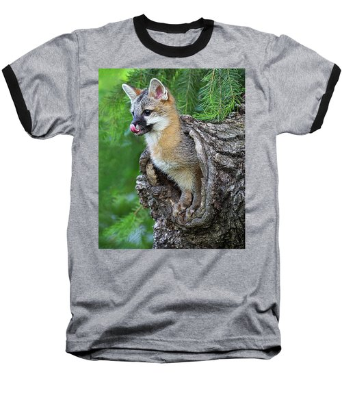 Out Pops A Gray Fox Baseball T-Shirt