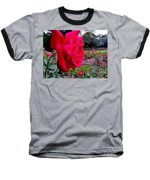 Baseball T-Shirt featuring the photograph Outstanding by Robert Knight