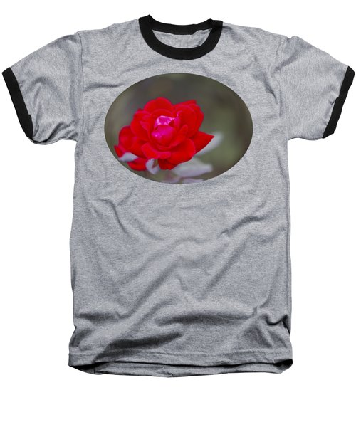 Oval Rose Motif Baseball T-Shirt