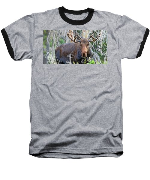 Baseball T-Shirt featuring the photograph Overlooking Moose by Scott Mahon