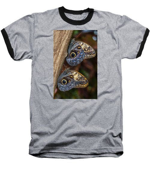 Owl Butterflies Baseball T-Shirt