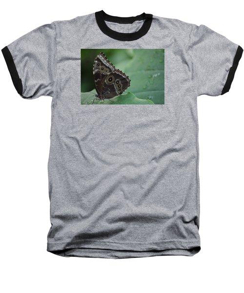 Owl Butterfly Baseball T-Shirt by Linda Geiger