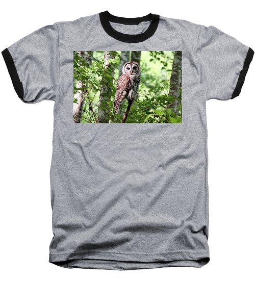 Owl In The Forest Baseball T-Shirt by Peggy Collins