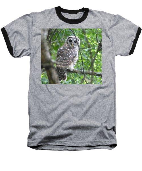Owl On A Limb Baseball T-Shirt by Donald C Morgan