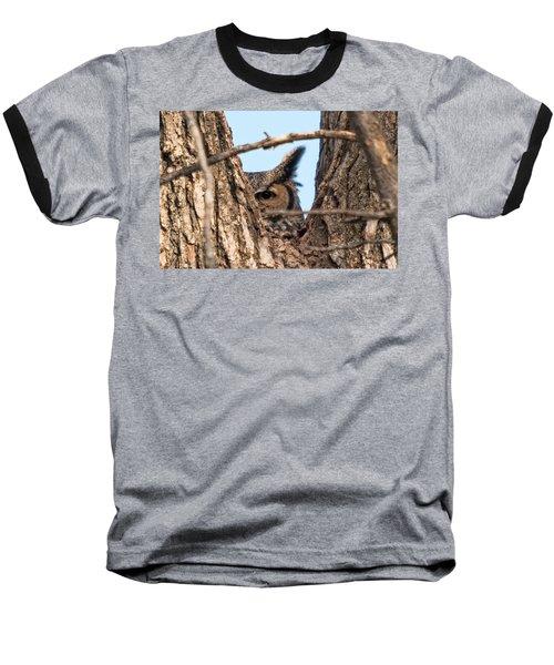 Owl Peek Baseball T-Shirt by Steve Stuller