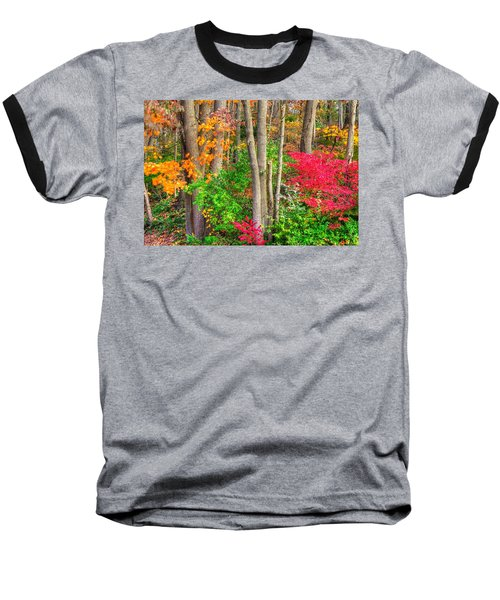 Pa Country Roads - Autumn Flourish - Harmony Hill Nature Area - Chester County Pa Baseball T-Shirt