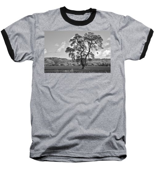 Pacheco Pass Baseball T-Shirt by Sonny Marcyan