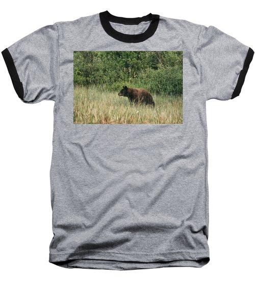 Pagosa Momma Bear Baseball T-Shirt