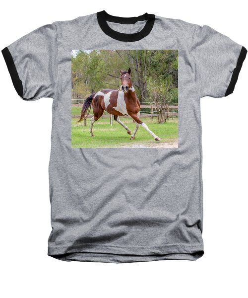 Paint Mare In Field Baseball T-Shirt