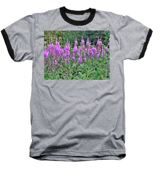 Painted Fireweed Baseball T-Shirt