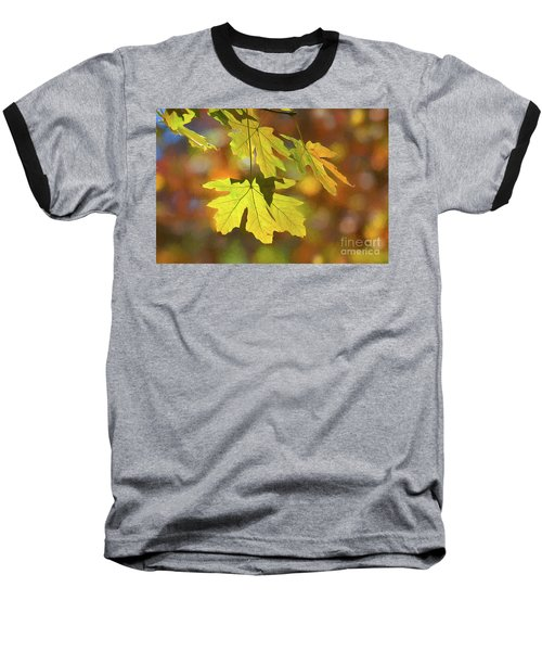 Painted Golden Leaves Baseball T-Shirt