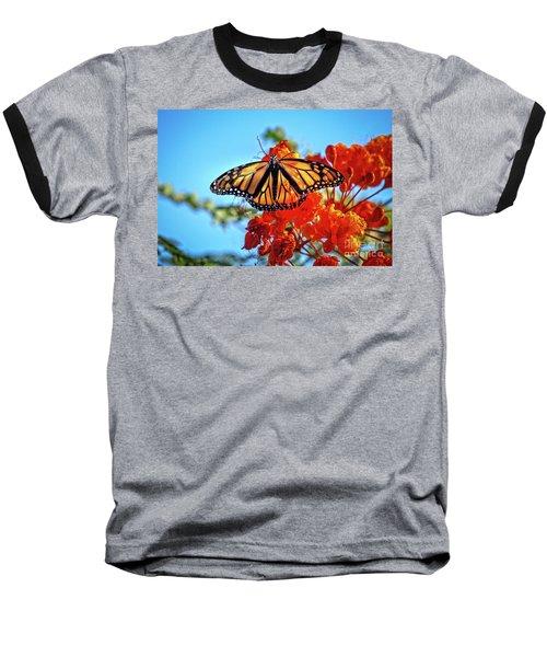 Painted Lady Baseball T-Shirt by Robert Bales