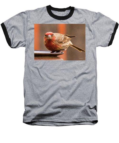 Painted Male Finch Baseball T-Shirt