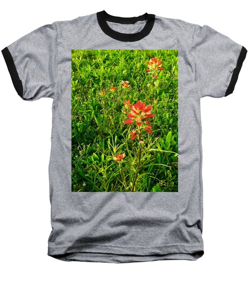 Painted Natives Baseball T-Shirt
