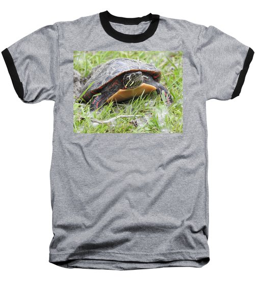 Baseball T-Shirt featuring the photograph Painted Turtle by Betty-Anne McDonald