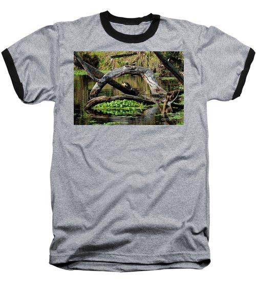 Painted Turtles Baseball T-Shirt by Paul Mashburn