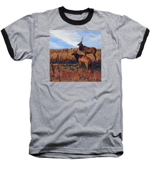 Pair O' Bulls Baseball T-Shirt
