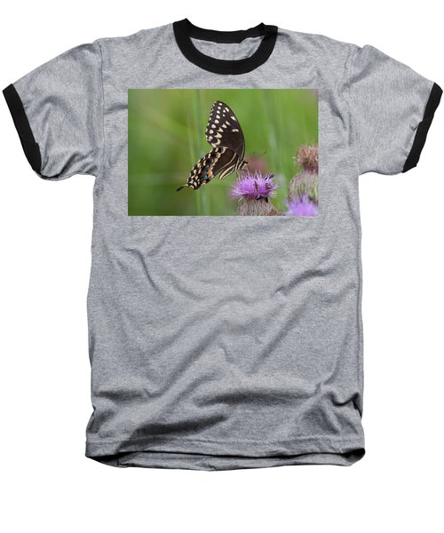 Palamedes Swallowtail And Friends Baseball T-Shirt