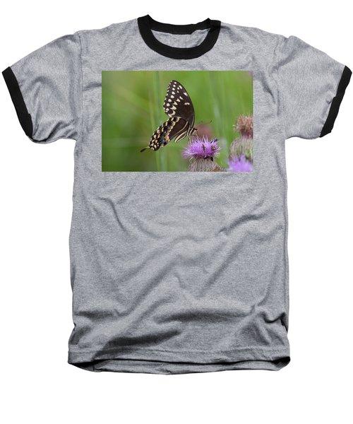 Palamedes Swallowtail And Friends Baseball T-Shirt