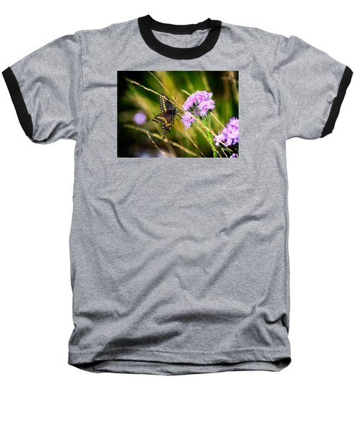 Palamedes Swallowtail Baseball T-Shirt
