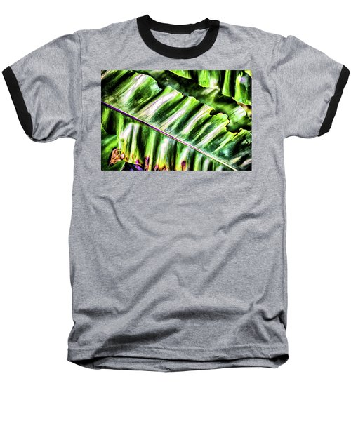 Palm Fronds Up Close Baseball T-Shirt
