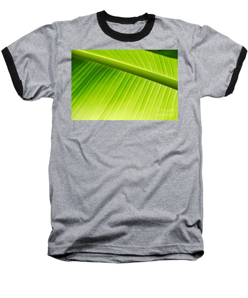 Baseball T-Shirt featuring the painting Palm Leaf Background by Yurix Sardinelly