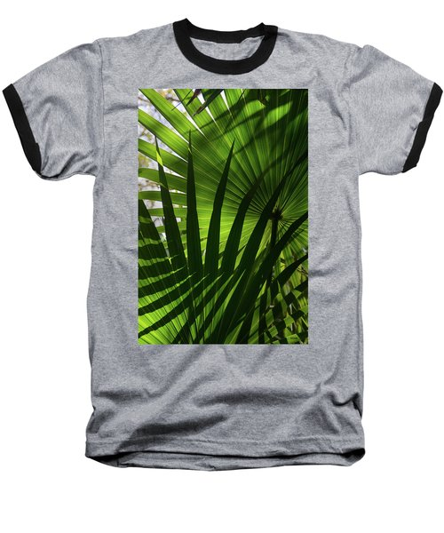 Palm Study 1 Baseball T-Shirt by Dana Sohr
