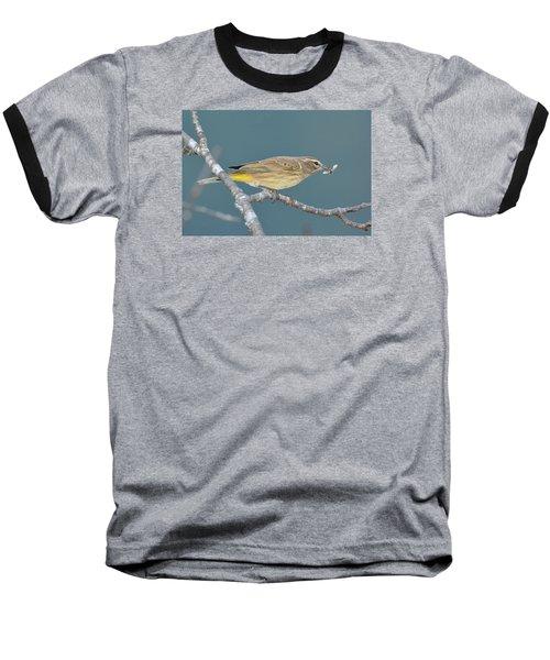 Palm Warbler Lunch Baseball T-Shirt by Alan Lenk