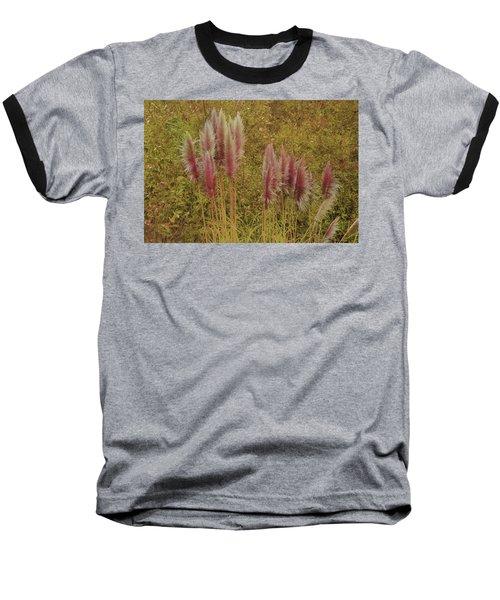 Pampas Grass Baseball T-Shirt by Athala Carole Bruckner