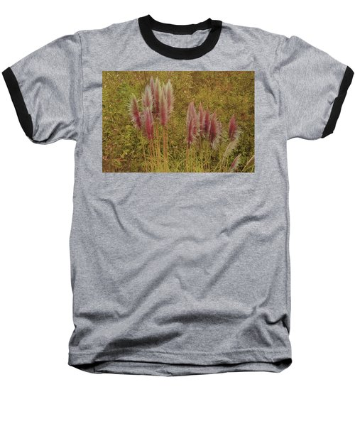 Pampas Grass Baseball T-Shirt