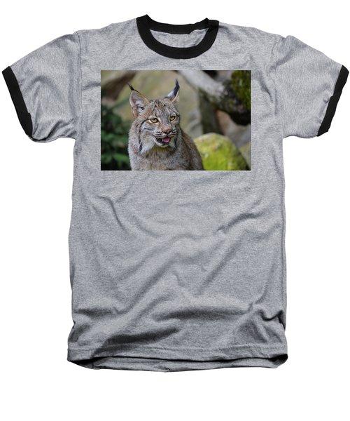 Panting Lynx Baseball T-Shirt