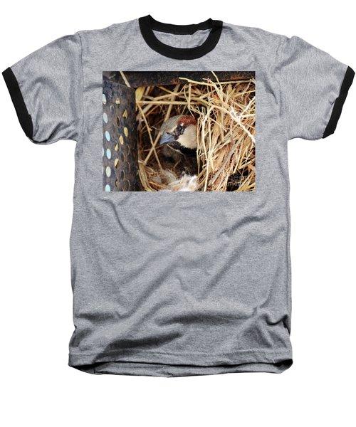 Papa Bird Baseball T-Shirt