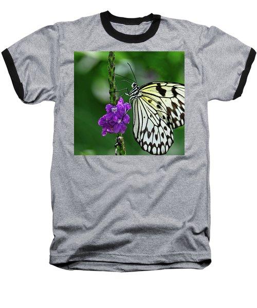 Paperkite Butterfly Closeup Baseball T-Shirt