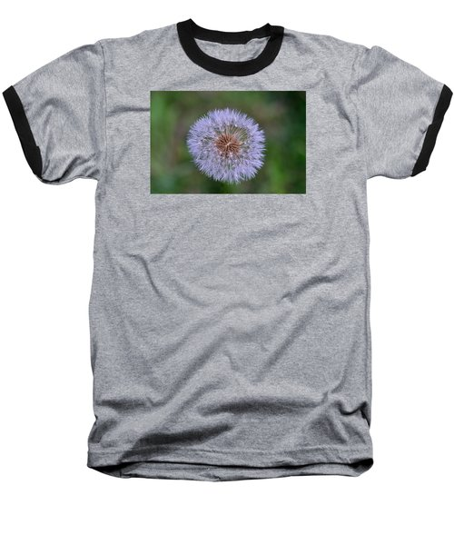 Parachute Club- Dandelion Gone To Seed Baseball T-Shirt by David Porteus