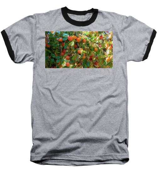 Paradise For Persimmons Baseball T-Shirt