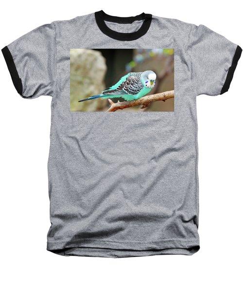 Parakeet  Baseball T-Shirt by Inspirational Photo Creations Audrey Woods