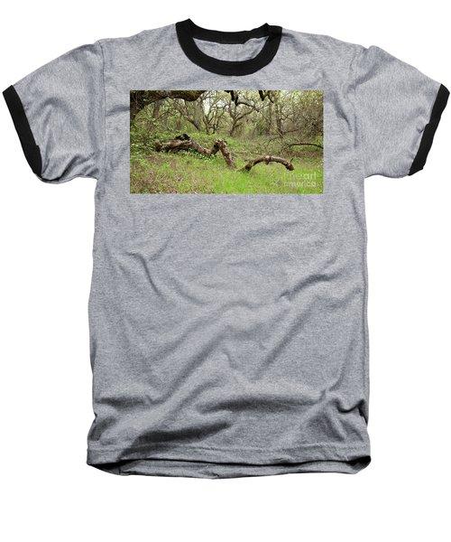 Park Serpent Baseball T-Shirt by Carol Lynn Coronios
